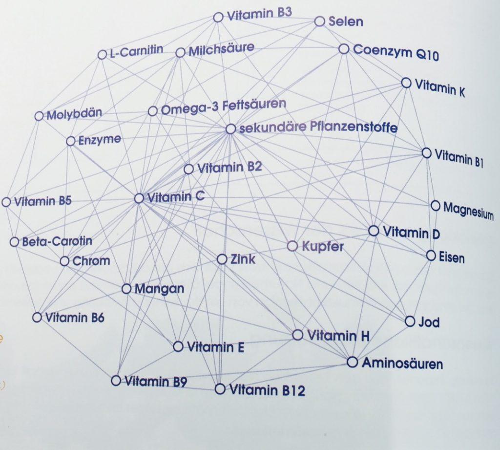 Vitalstoffzusammenhänge