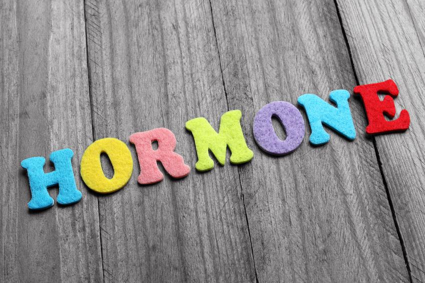 Was du unbedingt über Hormone wissen musst